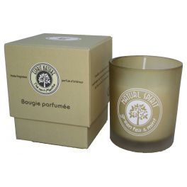 Green tea and mint scented candle, boxed 9.5x8